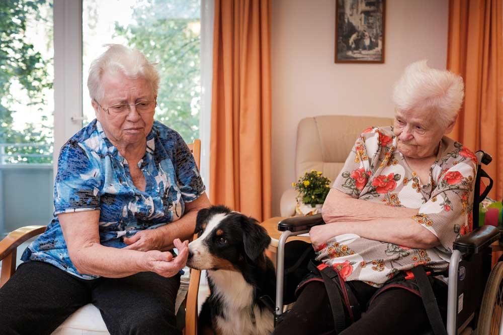 Zwei Damen sitzen und eine von ihnen streichelt einen Hund