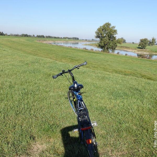 Mit dem Fahrrad auf der Wiese am Fluss