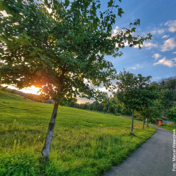 Sonnenuntergang auf dem Fahrradweg
