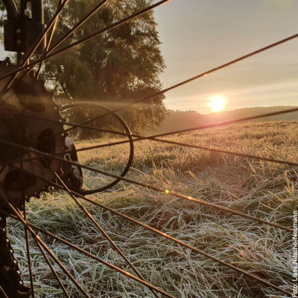 Sonnenaufgang durch die Fahrradspeichen fotografiert