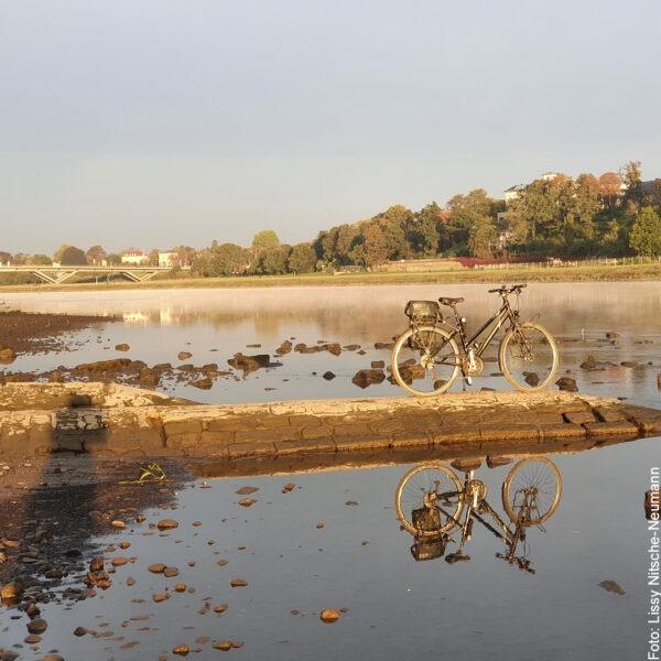 Fahrrad spiegelt sich in der Elbe